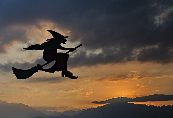 Vilde hekse   Sergei25  Shutterstock    325735907